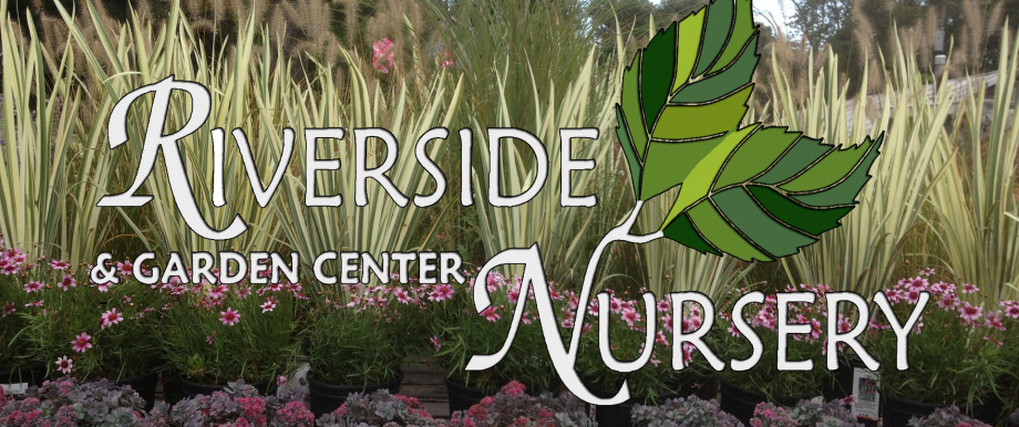 Riverside Nursery One Of Bergen County S Largest Whole Retail Nurseries With An Extraordinary Selection